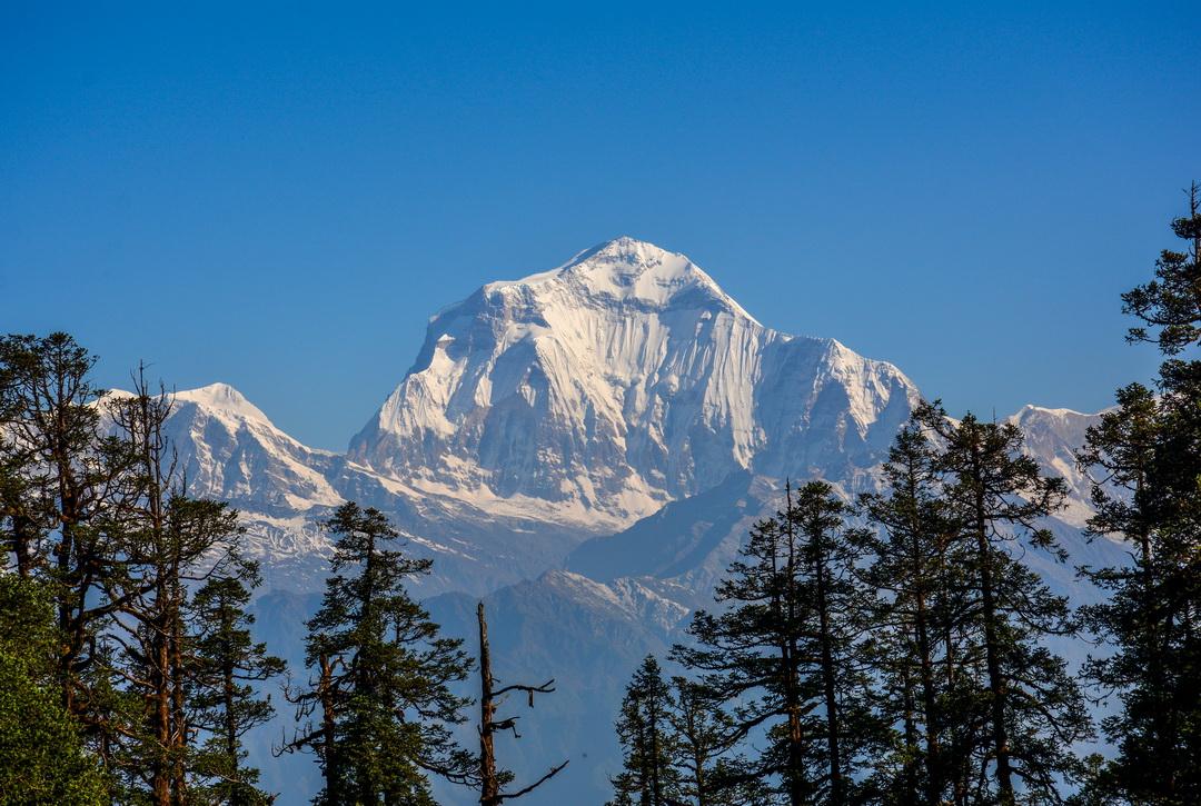 Dhaulagiri Forrás: Wikipédia
