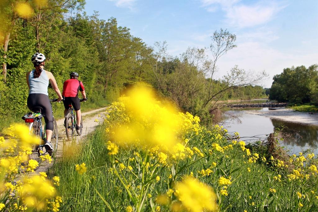 Duna mentén- Traisental Forrás: weinfranz.at
