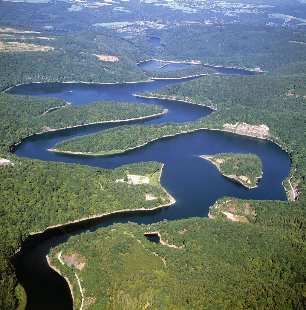 Eifel Nemzeti Park Forrás: Nationalparkforstamt Eifel / K.Pauly