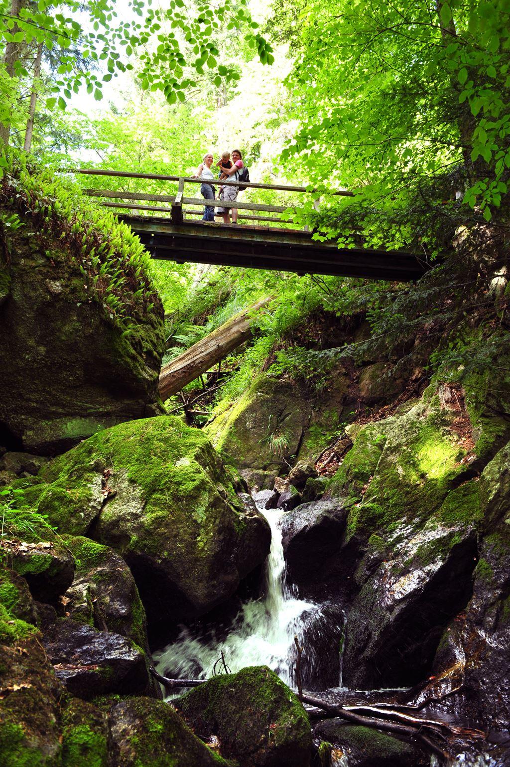 Családi kirándulás az Ysperklammban Forrás: (c) Waldviertel Tourismus_Robert Herbst