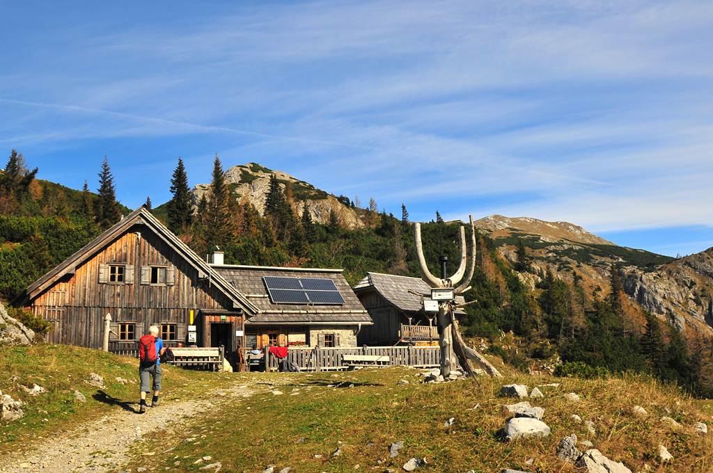 Alpesi hütte Forrás: (c) Steininger