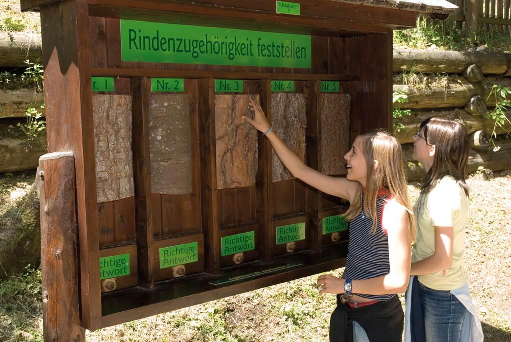 A favágók világát bemutató interaktív kiállítás Forrás: www.buergeralpe.at