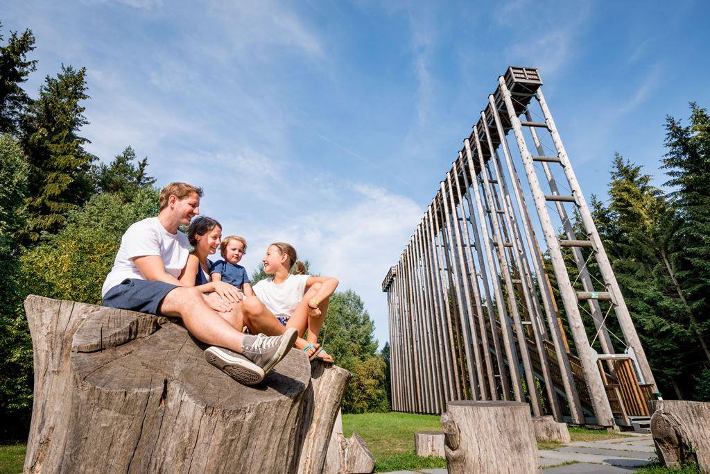 Égig érő létra a Hochmoor Schrems Natúrparkban Forrás: (c) Waldviertel Tourismus, ishootpeople.at