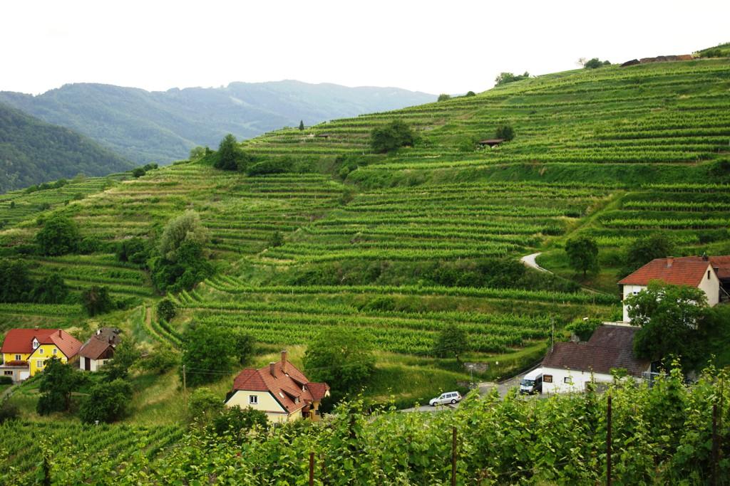 Aktív kikapcsolódás Alsó-Ausztriában Forrás: Mozgásvilág.hu