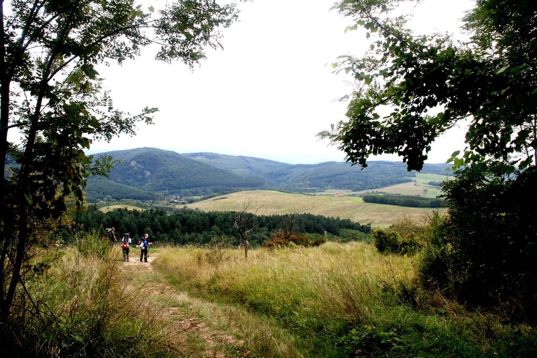 Uppony felé kiérve az erdőből. Forrás: www.mozgasvilag.hu
