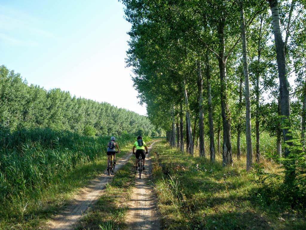 Keleti-főcsatorna Forrás: Magyar Kerékpárosklub (c) Gaál Dávid