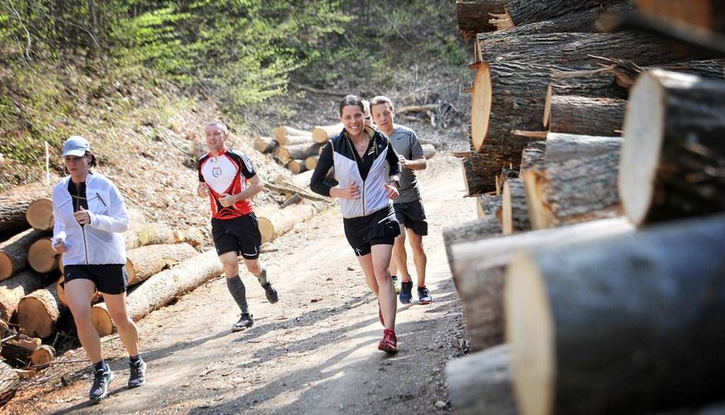 Kalenji Bükk Mountain Trail futóverseny Forrás: www.nse.hu