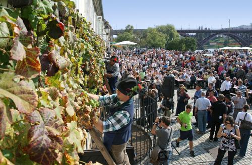 Old-wine-festival_Maribor_Arhiv-Navdih.net.JPG
