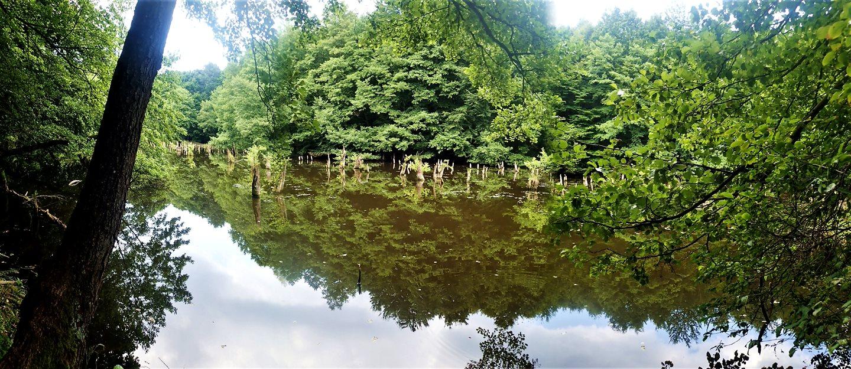 A Bakonyi Gyilkos tó Forrás: Nyáry Tamás
