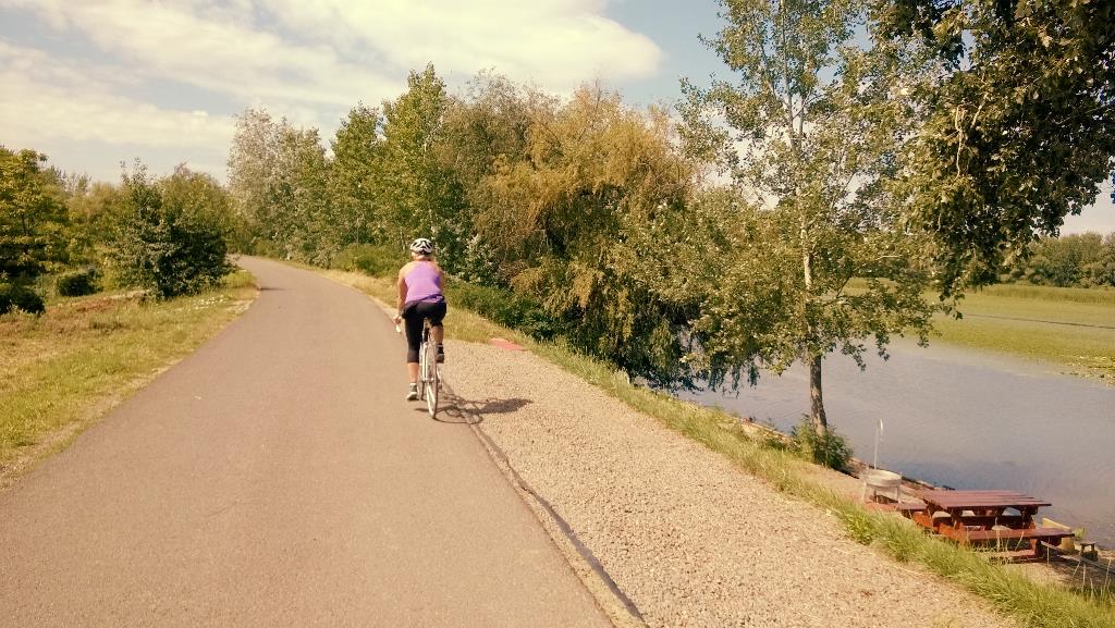 Jellegzetes tisza-tavi kerékpárút látkép Forrás: Mozgásvilág.hu