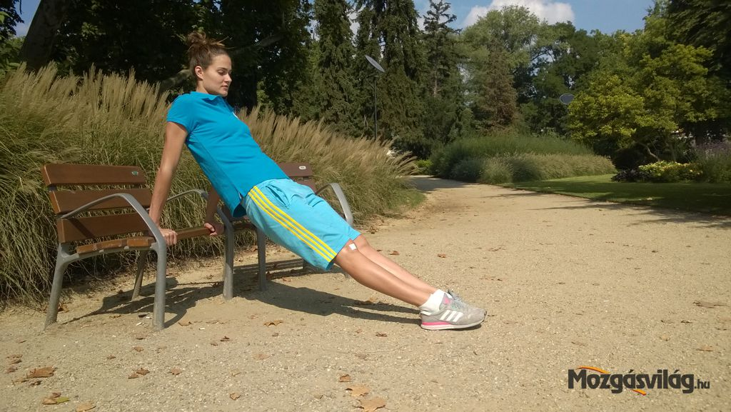 Hátsó fekvőtámasz Forrás: Mozgásvilág.hu