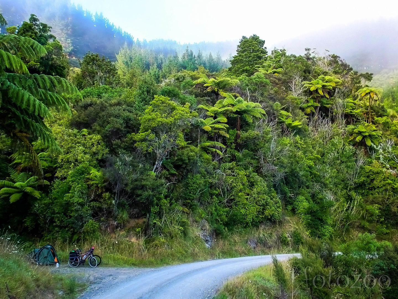 Ezt a helyet ajánlotta a szigorú külsejű maori. Szerintem ötcsillagos, de a Trivagon hiába keresnétek… Forrás: Fotozoo - Horváth Zoltán