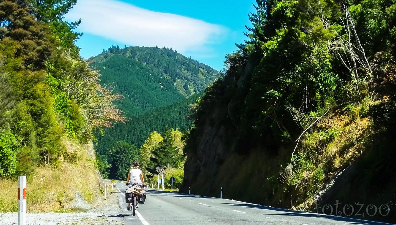 Úton az Abel Tasman Nemzeti Park felé. Forrás: Horváth Zoltán - Fotozoo