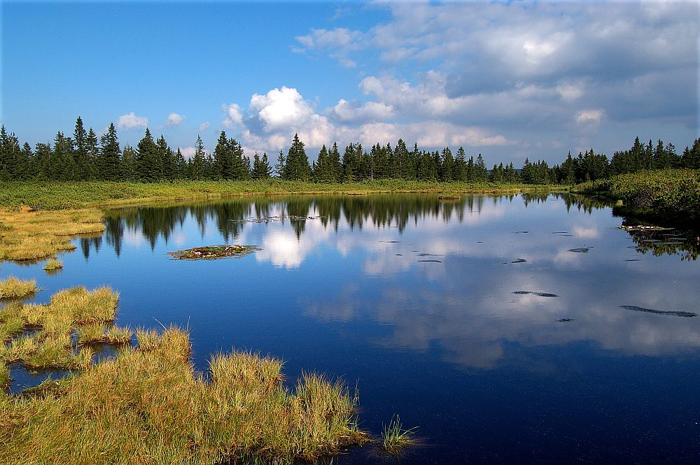 Ribnisko Jezero Forrás: koroska.si