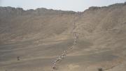 240 km futás a Szaharában - Interjú | www.mozgasvilag.hu