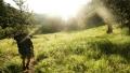 Indulhat a nyár!-Bringatúra, gyalogtúra célpontok és Kaladparkok várnak! | www.mozgasvilag.hu