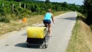 Fertő-tó körül kerékpáron | www.mozgasvilag.hu