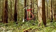 10 design kerékpártartó   www.mozgasvilag.hu