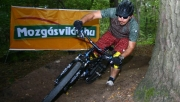 Mindenki imád tesztelni | www.mozgasvilag.hu