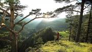 Alsó-Ausztria: egyedi élmények az Alpok csúcsai közt | www.mozgasvilag.hu