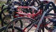 Alpinbike Kerékpár tesztnap   www.mozgasvilag.hu