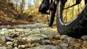 Kerékpártúrák Magyarországon | www.mozgasvilag.hu