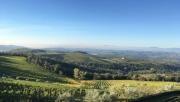 Chianti terepmaraton - nem csak ittam, futottam is!