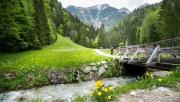 A legjobb montis trailek Felső-Stájerországban