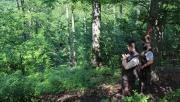 A biodiverzitás jó példája az Erdőanyai-völgyben