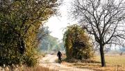 Őszi kerékpártúrák a B20 Lackenradweg kerékpárúton | www.mozgasvilag.hu