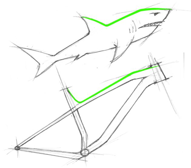 Sharkspine EVO