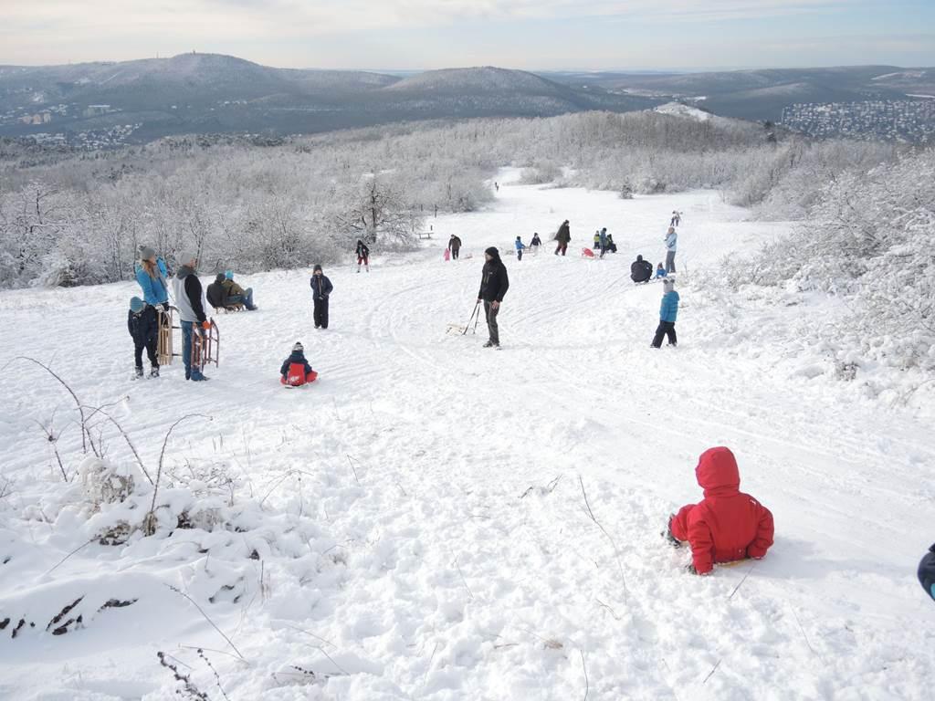 Téli sportok a Pilisi Parkerdőben Forrás: parkerdo.hu