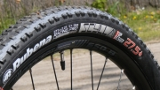 Rubena Scylla Top Design Grey Line 27,5