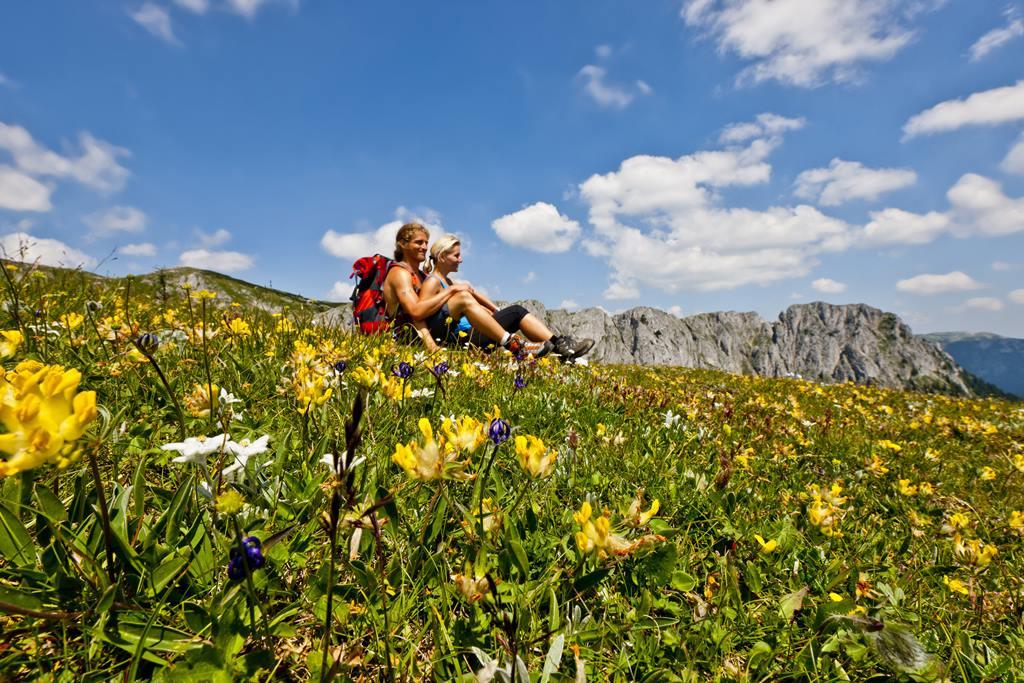 Meseszép túrák Forrás: (C) Steiermark Tourismus_Tom Lamm