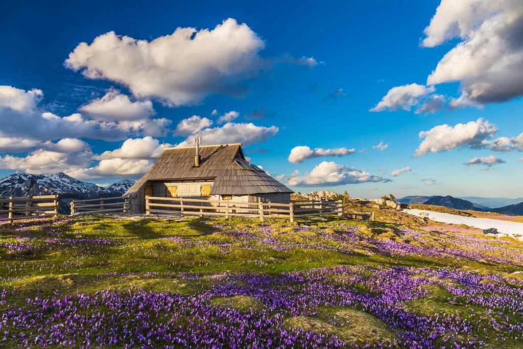 Velika Planina Forrás: (c) feelgreentravel.com