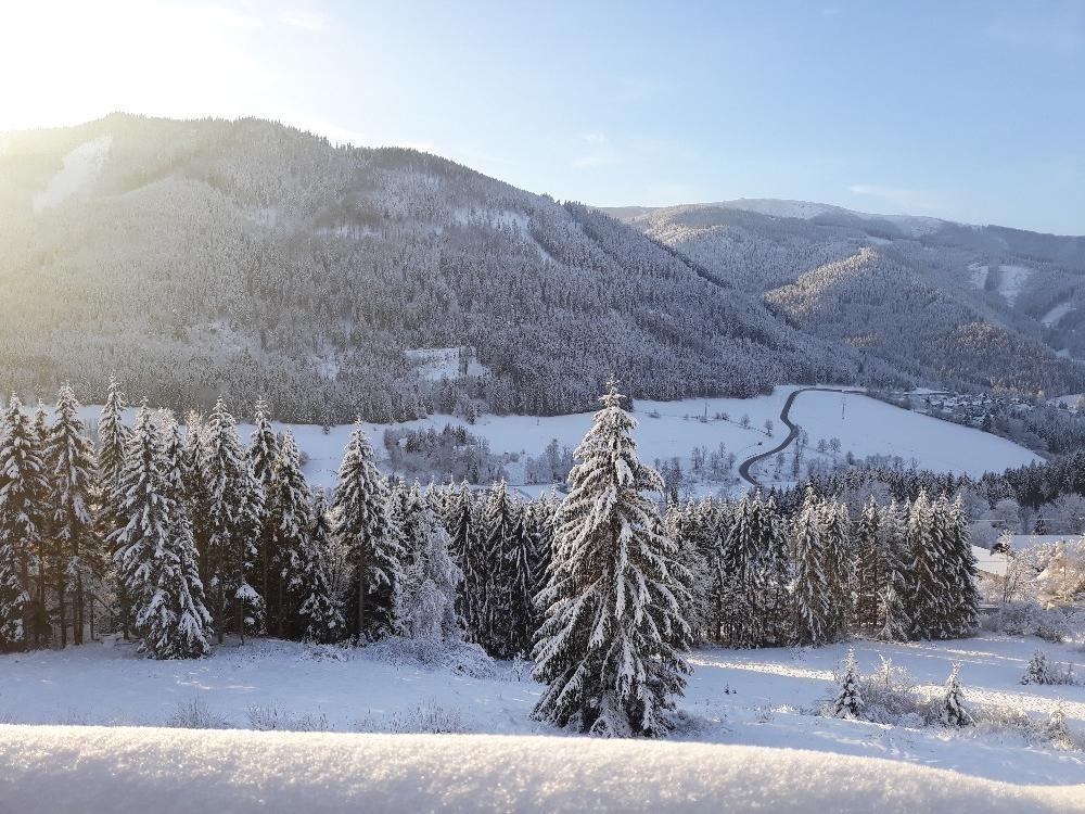 Az Alpenhof hotel környezete télen Forrás: www.alpenhofhotel.eu