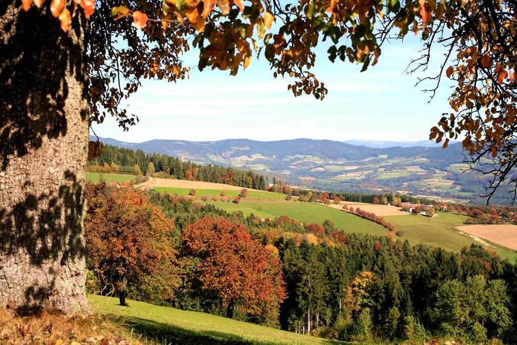 TV Naturpark Pöllauer Tal Forrás: (c) Tourismusregionalverband Oststeiermark