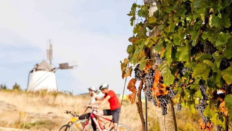 Kerékpárosok a Retzer Land régióban Forrás: (c) Retzer Land / Bartl