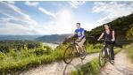 Bor & kajszi e-bike túra