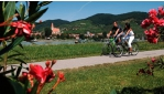 Kerékpártúra a Wachau és Nibelungengau régiókban