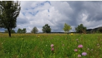 Kirándulások a Joglland-Waldheimat régióban